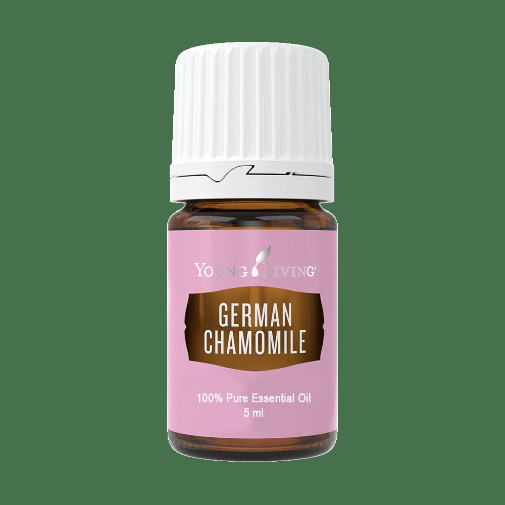 German chamomile - Prava kamilica